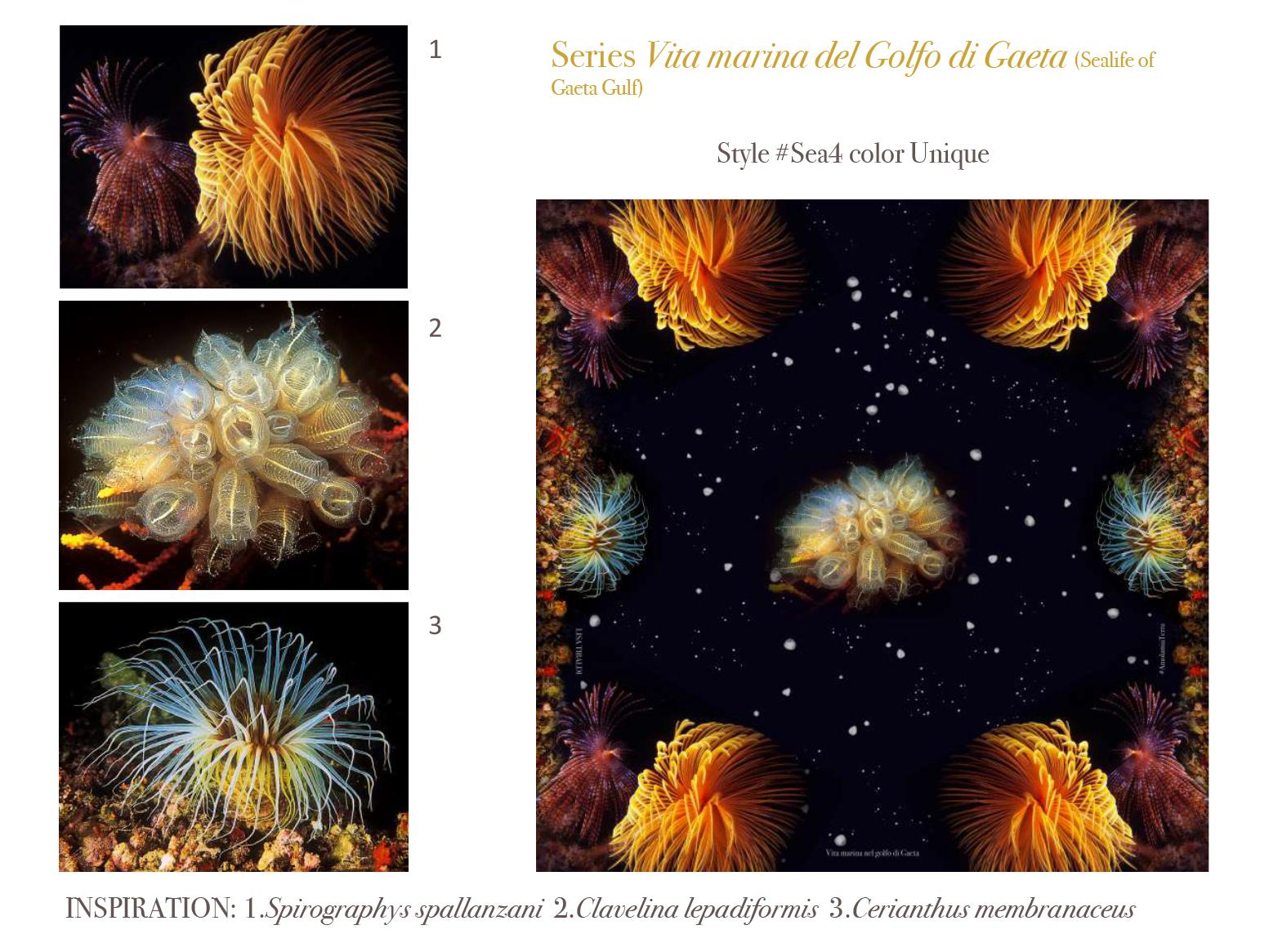 Lisa Tibaldi Terra Mia presentazione collezione SS 2021-7